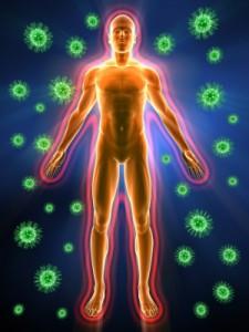 immunsystem2