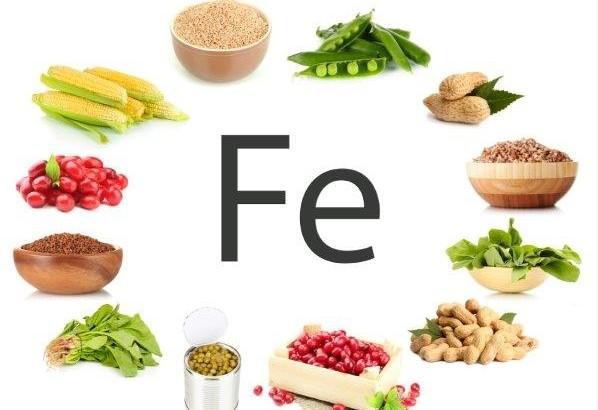 iron nutrition